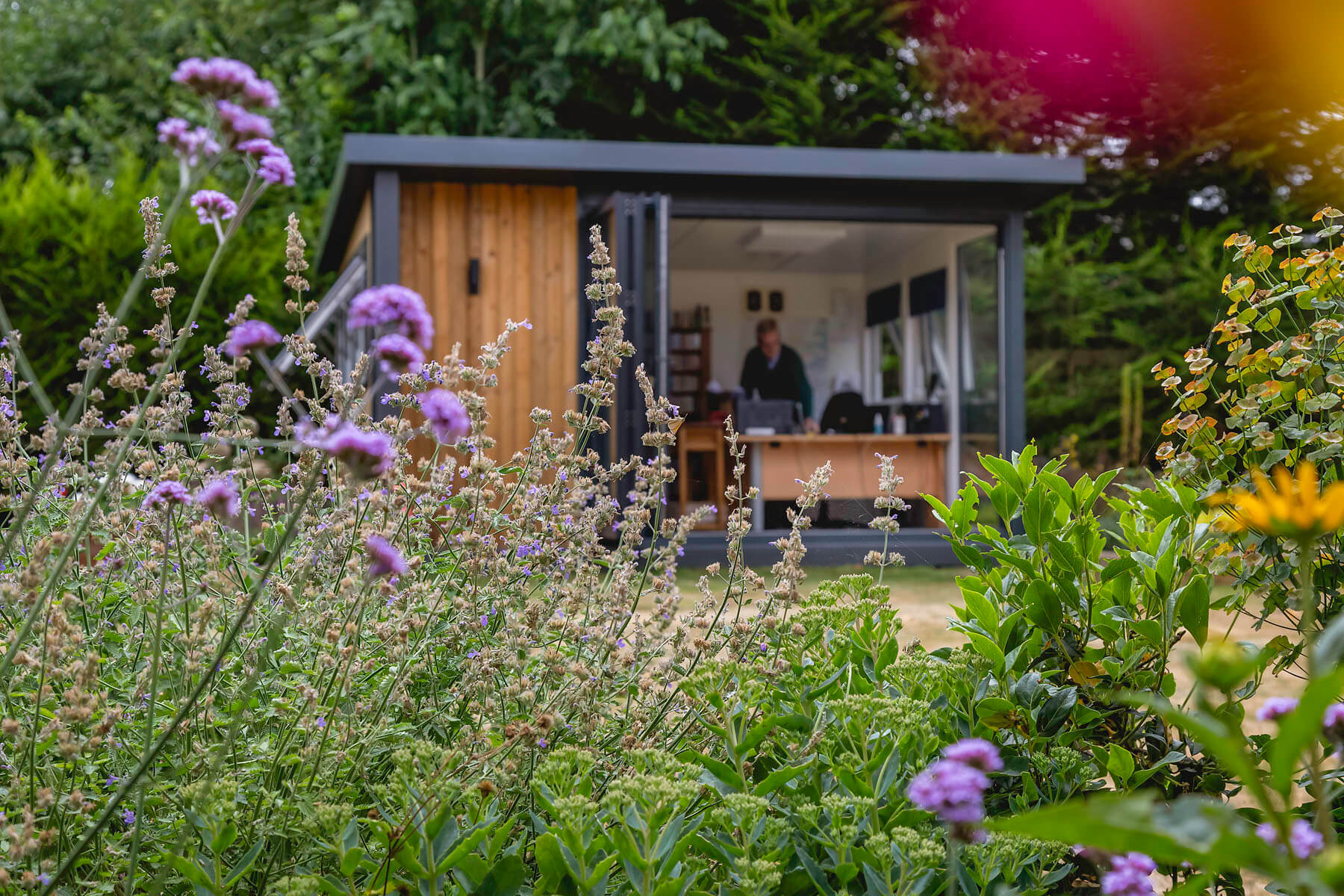 garden office surrounded by beautiful plants